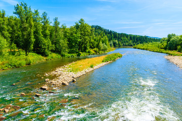 Dunajec river with green hills on shore on sunny summer day near Nowy Targ, Tatra Mountains, Poland