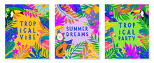 Set Of Summer Vector Illustrat...