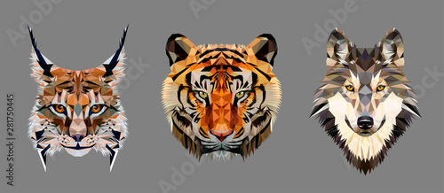Photo Low poly triangular tiger, lynx and wolf heads on grey background, vector illustration isolated