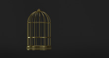 Cage Gold Symbol Of Freedom, Minimalist Black. Confinement At Home. Quarantine Health.