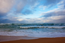 Windswept Beach With Rolling S...