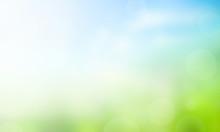 Sunlight, Seasons, Summer, Early, Sun, Garden, Calm, Season, Grass, New, Development, Sunshine, Energy, Health, Christmas, Greenery, Natural, Environmental, Fresh, Meadow, Corporate, Background, Bokeh
