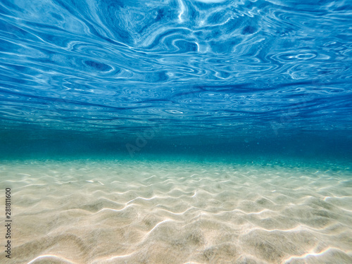 Underwater background with ocean water. At the bottom of the sea.