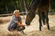 Frau mit Pferd auf der Weide