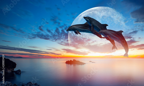 Spoed Foto op Canvas Dolfijn Silhoutte of beautiful dolphin jumping up from the sea at sunset with super moon