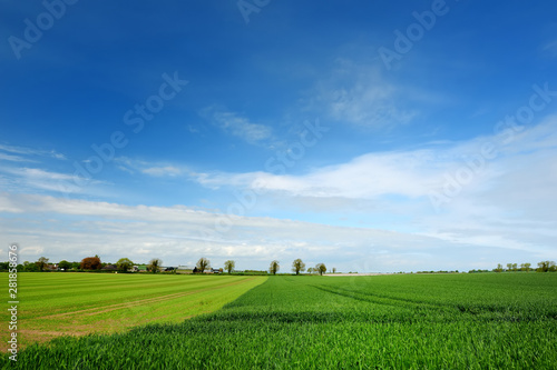 Leinwand Poster Scenic view of endless lush pastures and farmlands of Ireland
