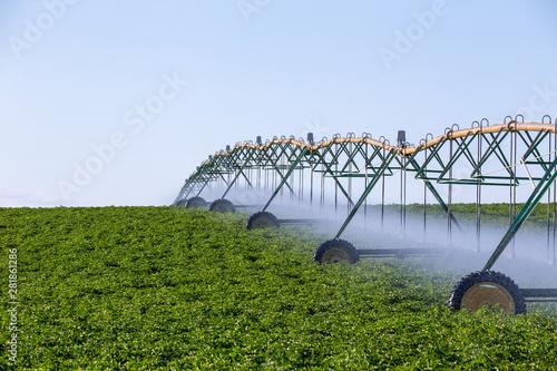 Fotomural  Center pivot crop irrigation system for farm management