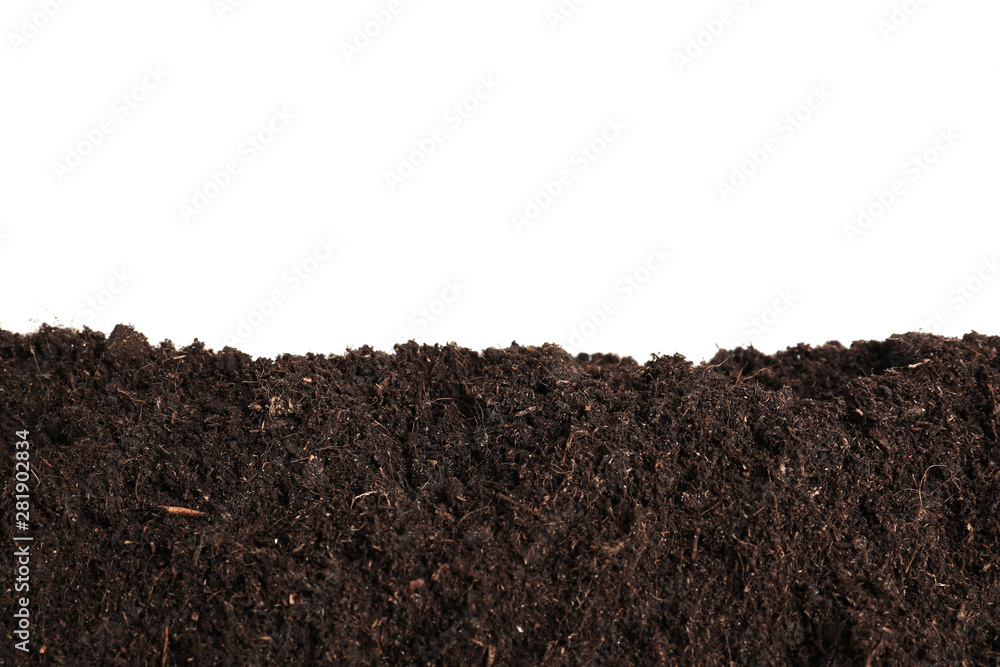 Fototapety, obrazy: Layer of fresh soil isolated on white. Gardening time