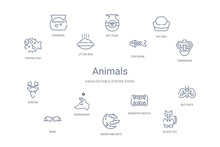 Animals Concept 14 Outline Icons