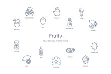 Fruits Concept 14 Outline Icons