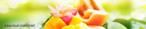 Sliced mango water melon papaya fruits wet palm - 281927447