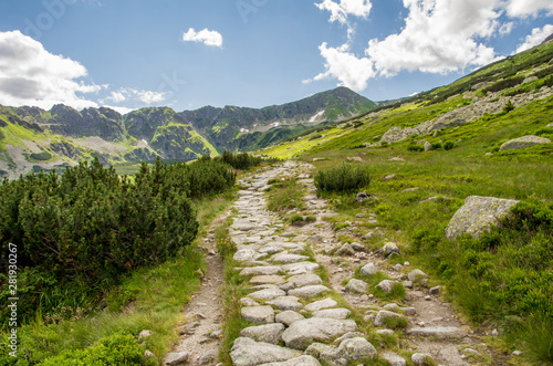 Fototapety, obrazy: Path in Valley of five polish ponds. Poland.
