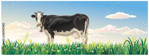 Fotografía Rural summer landscape with cow