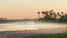 Florida Marsh And Swamp At Sunrise With Fog, Orlando Wetlands.