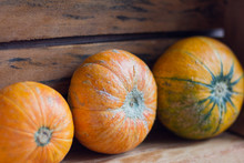 Ripe Pumpkins In A Wooden Box For Storage,delicious Autumn Vegetable