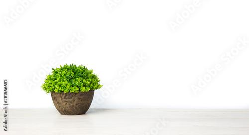 Fotografía  Artificial green plant