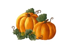 Two Yellow Pumpkins With Green...
