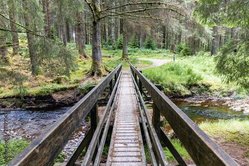 Fototapeta kładka  kladka-dla-pieszych-nad-rzeka-severn-w-hafren-forest-w-walii-most-jest-czescia-spaceru