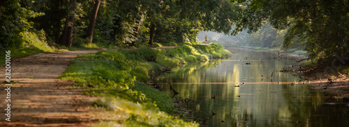 Photo Panorama Tree Lined Walking and Jogging Path on a Calm River Bank with Dappled M