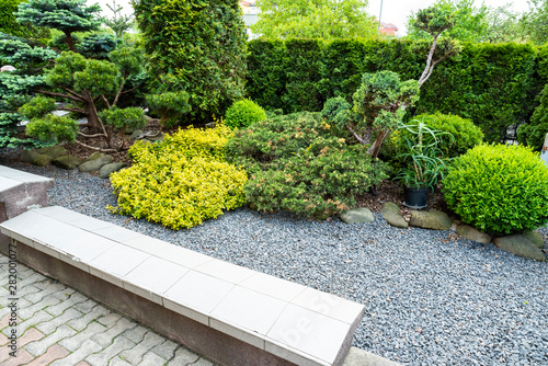 Stickers pour portes Taupe evergreens with gravel in the decoration of the flowerbed in landscaping