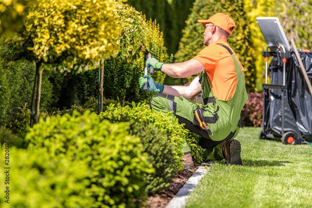 Fototapety, obrazy: Garden Worker Trimming Plants