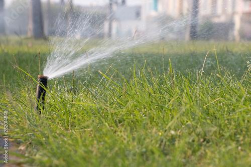 Photo riego por aspersion trabajos de jardinería