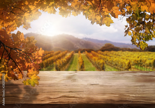 Poster Miel Brown wood table in autumn vineyard landscape with empty copy space on the table for product display mockup. Winery and wine tasting concept.