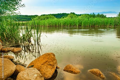 Na brzegu rzeki - 282029800