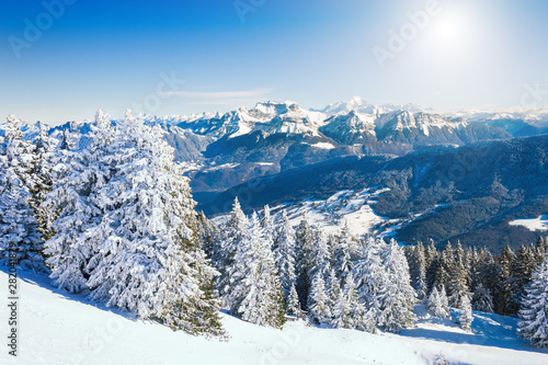 Blanc Snow-covered trees in Alps mountains with Mont Blanc ridge in the background, France. Beautiful winter landscape