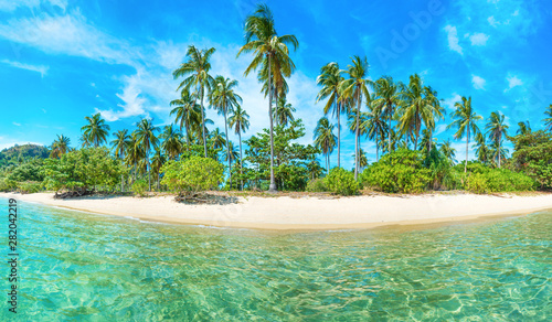 Obraz Panorama of beautiful beach on paradise tropical island with coconut palm trees, white sand and blue sea - fototapety do salonu
