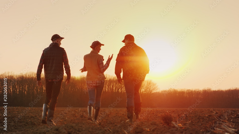 Fototapety, obrazy: Three farmers go ahead on a plowed field at sunset. Young team of farmers