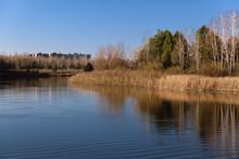 Heartshape Lake In The Swamps