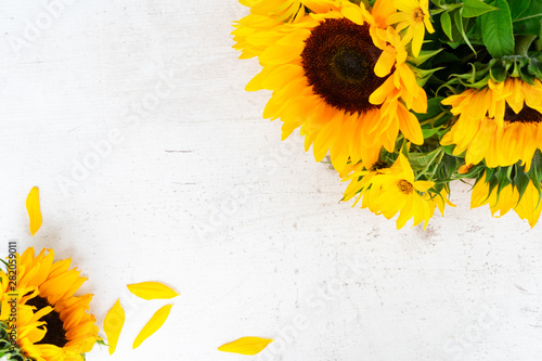 Photo sur Aluminium Tournesol Sunflowers on white