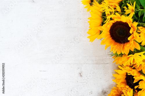 Carta da parati Sunflowers on white