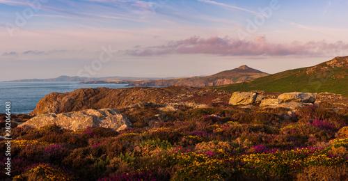 Türaufkleber Rosa dunkel Sunset on North Pembrokeshire Coast, St Davids Head