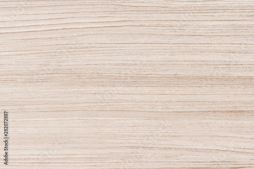 Texture of wood background Canvas Print
