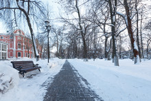 A Pedestrian Walkway In A Winter Park Is Bombarded With Snow. Paving With Grey Paving Slabs.