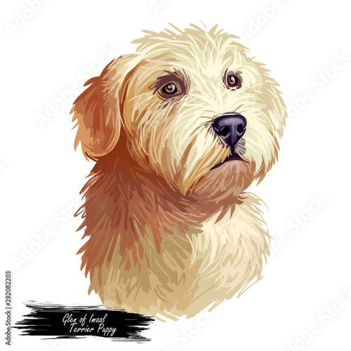 Photo  Glen of Imaal Terrier dog breed digital art illustration isolated on white
