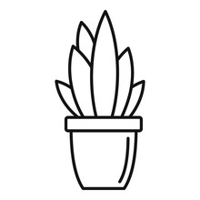 Modern Succulent Pot Icon. Outline Modern Succulent Pot Vector Icon For Web Design Isolated On White Background