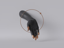 3d Render, Black Decorative Fe...
