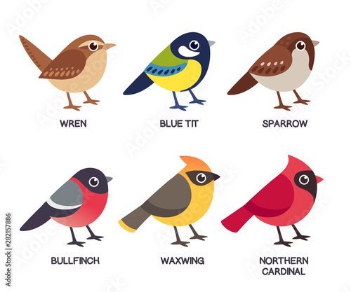 Small birds set Canvas Print