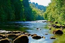 Tualatin River 1