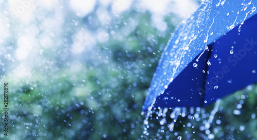 Foto auf AluDibond Lineale Wachstum Lifestyle scene of rainy weather. Blue umbrella under rainfall. Banner format.