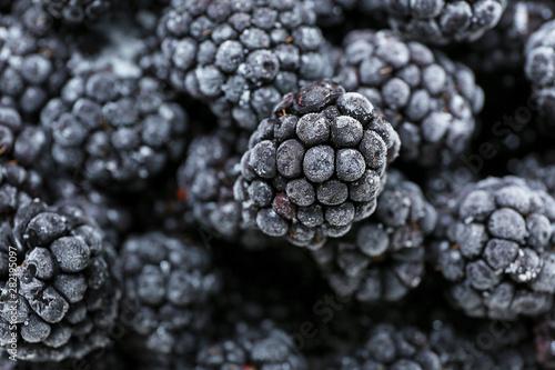 Fotografija  Heap of tasty frozen blackberries, closeup