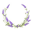 Wreath of lavender, provence region of france. The frame of bouquet for perfume label. Bunch of lavender. Vector illustration.