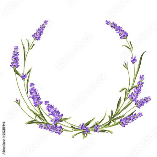 Fototapeta Wreath of lavender, provence region of france. The frame of bouquet for perfume label. Bunch of lavender. Vector illustration. obraz