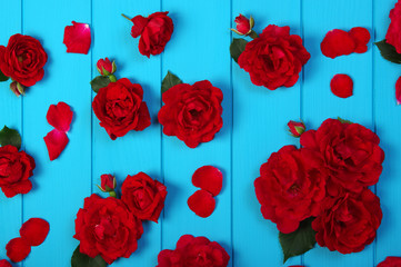 Red roses flowers on blue w...
