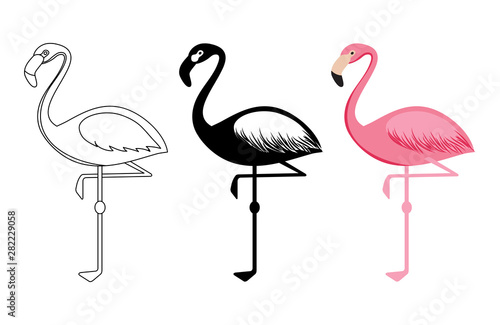 Photo  Outline and silhouettes flamingo vector isolated on white background