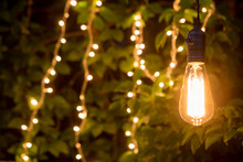 Vintage Incandescent Bulb And Party Lights In A Garden, Summertime Party