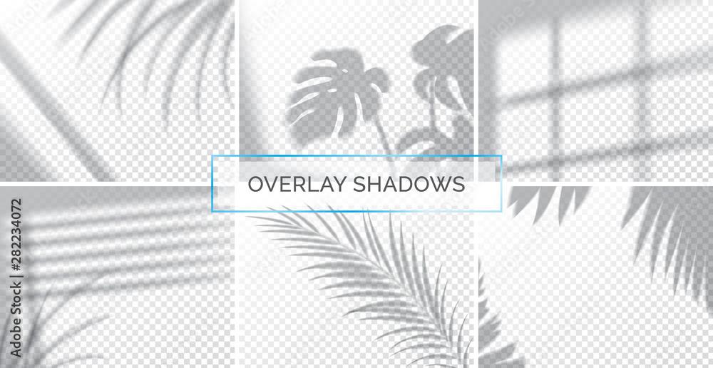 Fototapeta Set of shadows, overlay effects mock up, window frame and leaf of plants, natural light, vector illustration.